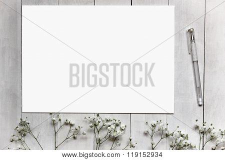 Mockup For Presentations With Gypsophila Flowers