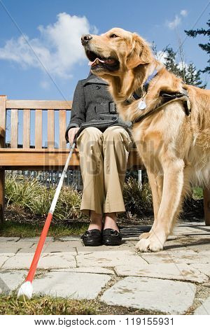 Blind woman and a guide dog