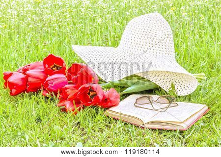 Bouquet Of Tulips, A Book, A Hat In The Garden