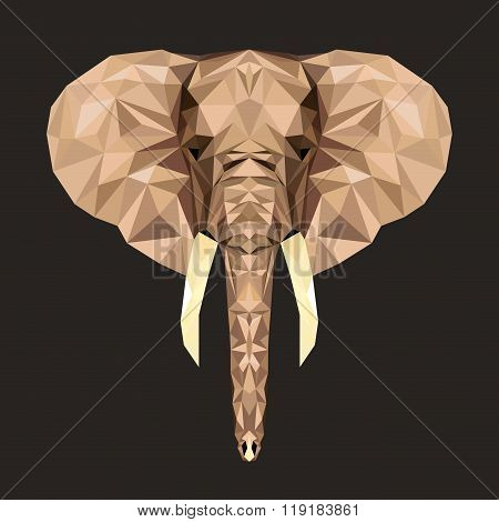 Vector portrait of elephant the polygonal style. Triangle illustration of animal for use as a print