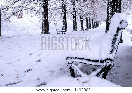 View Of Bench And Trees With Falling Snow.