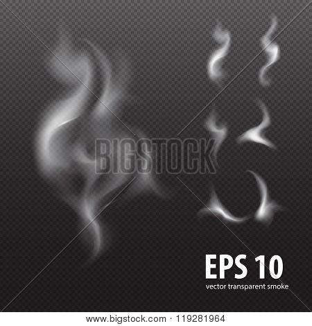 design element: set of white smoke on transparent black background, white smoke on black background,