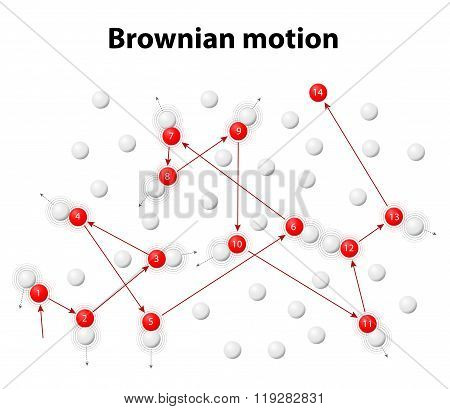 Brownian Motion Or Pedesis