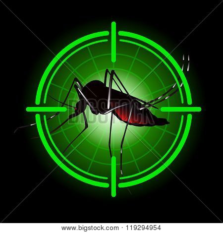 Focus Scan Aedes Aegypti Mosquitoes With Stilt Target. Sights Signal. For Institutional Related Sani