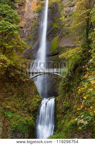 Multnomah Falls view