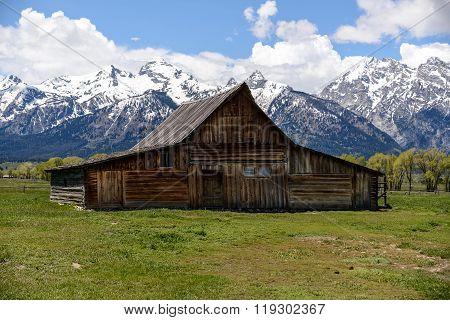 Old Mormon Barn In The Tetons