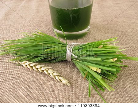 Fresh wheatgrass juice
