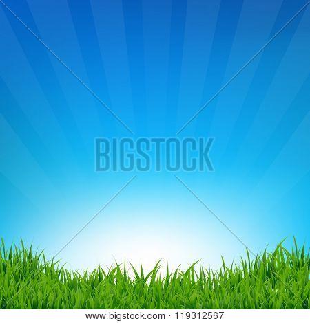 Blue Sky And Grass Sunburst Background