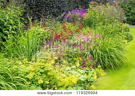 Beautiful colorful walled garden in the summer
