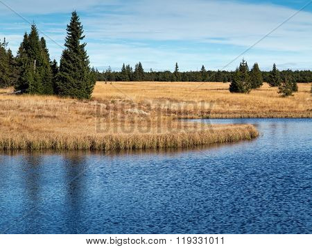 Dead pond is surrounded by woods approximately three kilometers northeast of Hrebecna. By the dark color of the water caused by the surrounding peat is sometimes called the Black Pond. The Ore Mountains Czech republic.