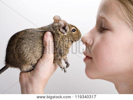 Girl With Degu