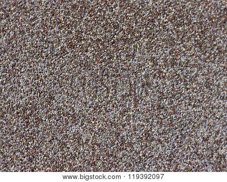poppy grains
