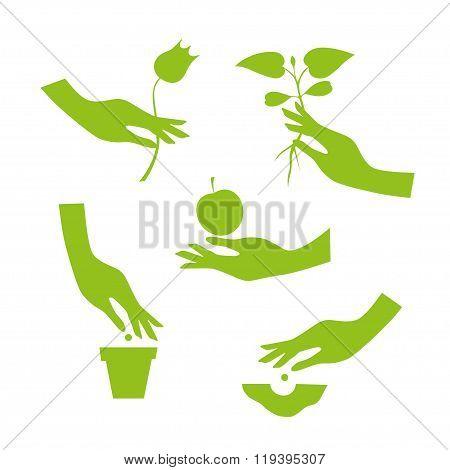 Green Silhouette Of Female Hand Performs Season Garden Works