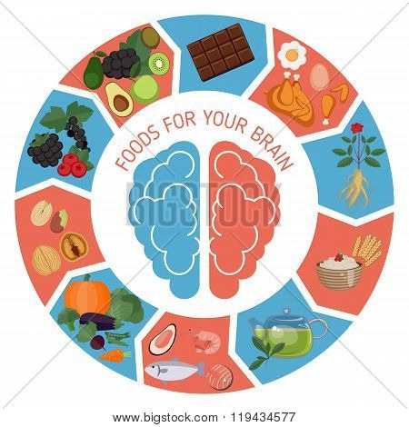 Brain Foods Infographics