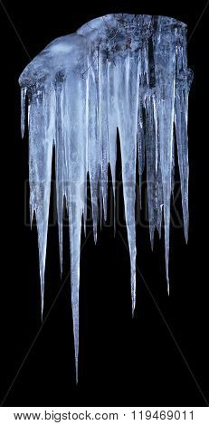 Isolated group of long blueish icicles on black background