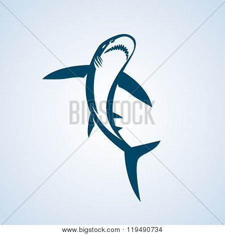 Shark - vector illustration.