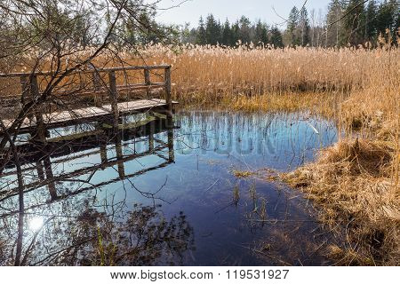 Blue Fount In The Swamp, Tourist Attraction Osterseen