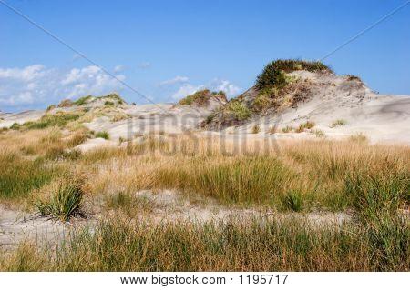 Dunes Of Hatteras