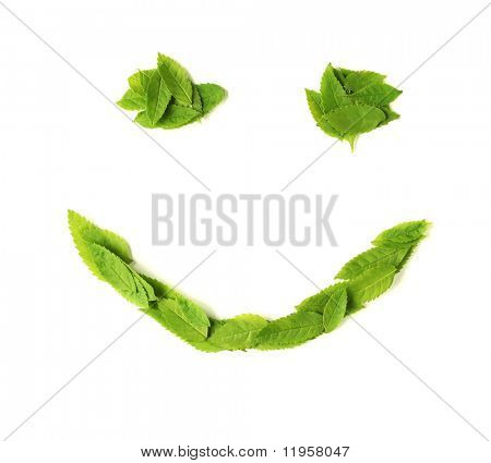 Smiley face made of leaves