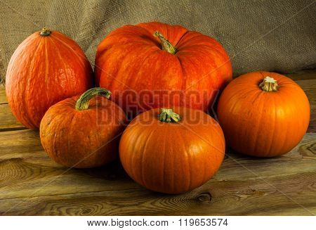 Five  Pumpkins On Dark Wooden Background