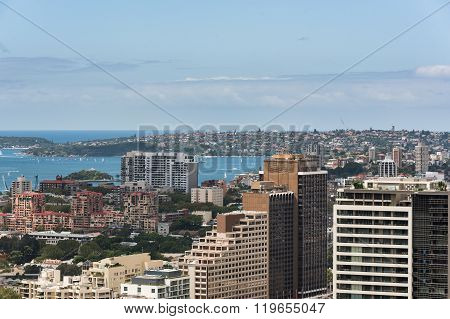 Sydney City And Bay From Height