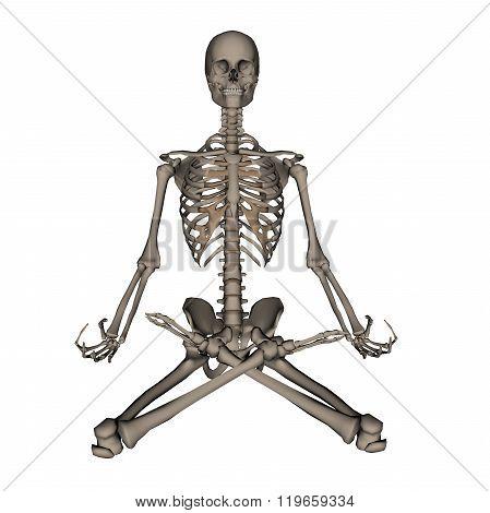 Human skeleton meditation- 3D render