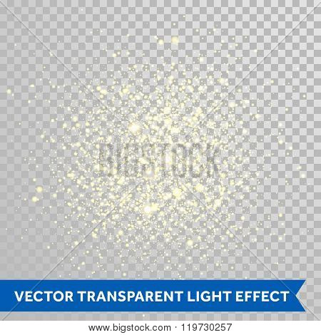Vector shimmering particles of fireworks explosion. Glittering light effect. Twinkling lights spray on transparent background.