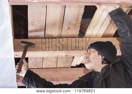 Builder Hammers A Nail