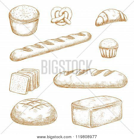 Bakery, pastry and buns sketches