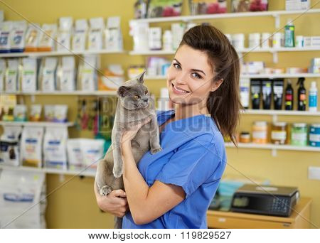 Portrait of a beautiful veterinarian holding young cat at clinic.