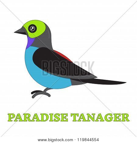 Paradise Tanager Bird Line Art Icon