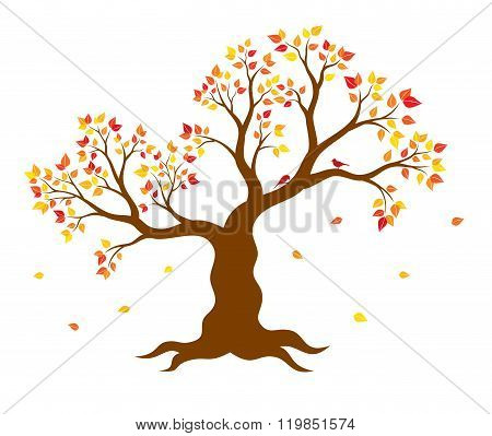 Vector illustration of autumn tree with yellow, red, orange leaves on white background. Wall sticker
