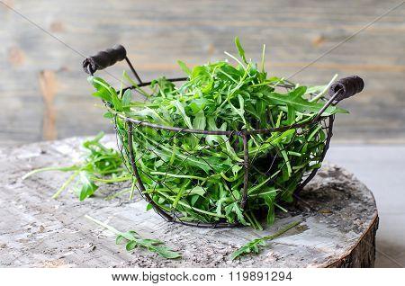 Ruccola/arugula For Fresh Green Salad