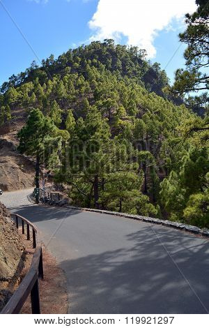 Scene from mountains on La Palma Island. Canary Islands. Spain.