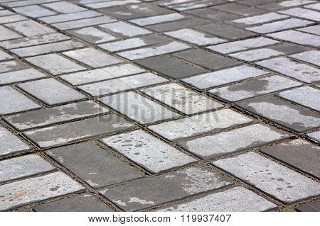 Wet Pavement After The Rain