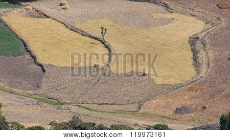 agricultural area in Ethiopia. rift valley nature, rift,