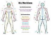 Meridian System Chart - GERMAN LABELING!- Male body with acupuncture meridians, anterior and posterior view. poster