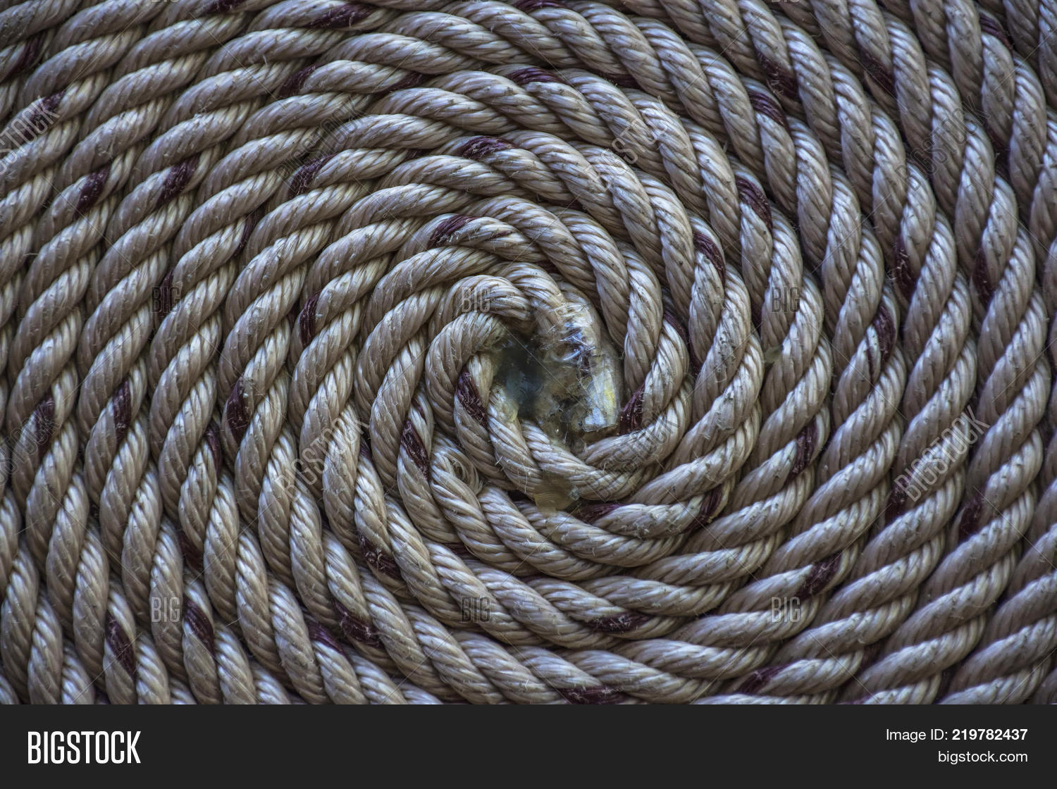 Circle Roll Texture Image & Photo (Free Trial) | Bigstock