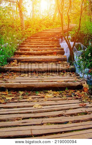 Wood path in the Plitvice national park at autumn in Croatia