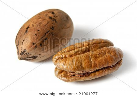 Pecan nuts - Carya illinoinensis. Isolated on white background