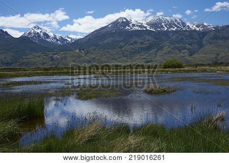 Wetlands along the base of Valle Chacabuco in northern Patagonia, Chile
