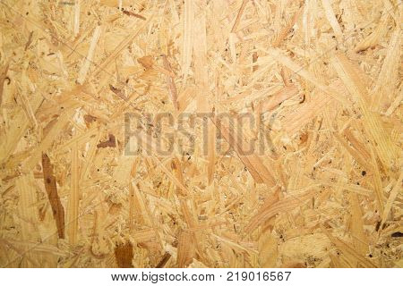 Pressed and glued detailed timber . Photo of an abstract texture