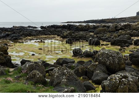 the rocks and stones of the Giant's Causeway on the northern coast of Ireland