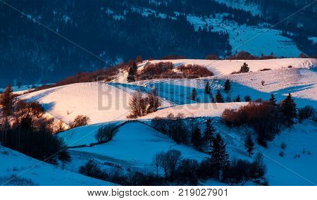 snowy forested hills in morning light. beautiful nature scenery in winter