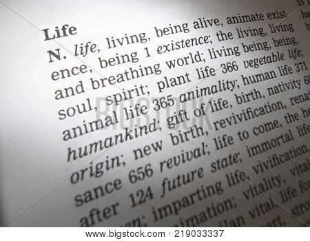 Cleckheaton, West Yorkshire, Uk: Thesaurus Page Showing Definition Of Word Life, 30th March 2005, Cl