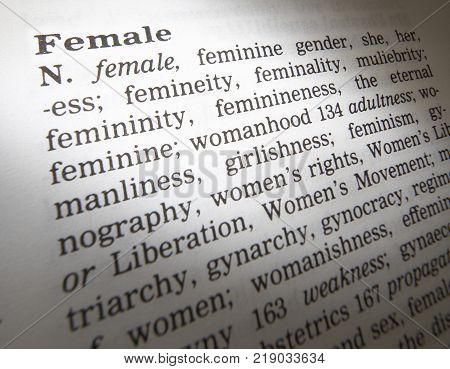 Cleckheaton, West Yorkshire, Uk: Thesaurus Page Showing Definition Of Word Female, 30th March 2005,