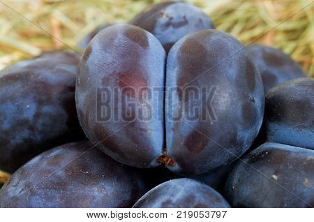 Natural Plum. Plum In The Butt. Natural Fruit.
