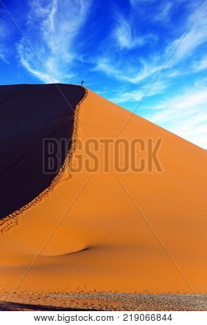 The tourist climbs up the crest of a huge dune. Giant violet-orange dune in the Namib Desert. The concept of extreme and exotic tourism. Namibia, South Africa