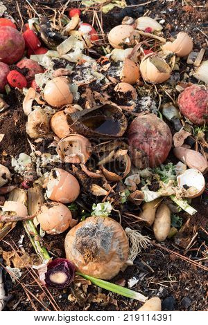 Compost pile with eggshells and vegetable scraps rotting vertical aspect