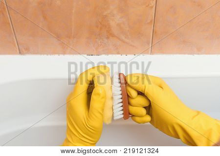 Hand in gloves I want to clean mold in the bathroom with a sponge and brushes